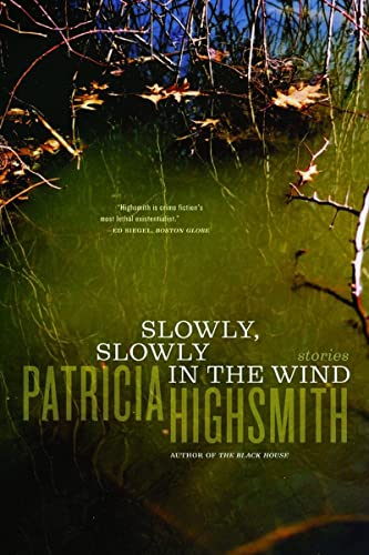9780393326321: Slowly, Slowly in the Wind