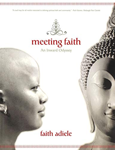 9780393326734: Meeting Faith: The Forest Journals of a Black Buddhist Nun