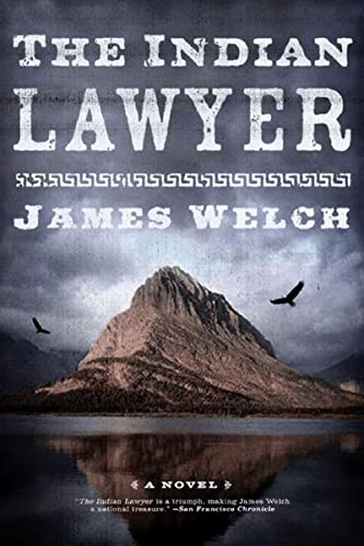 9780393329384: The Indian Lawyer: A Novel