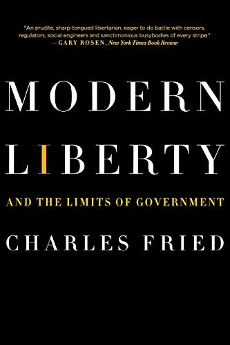 9780393330458: Modern Liberty: And the Limits of Government (Issues of Our Time)