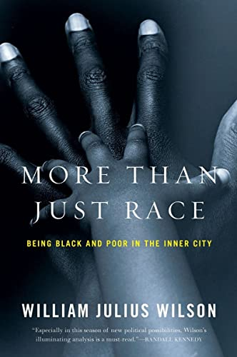 9780393337631: More than Just Race: Being Black and Poor in the Inner City (Issues of Our Time)