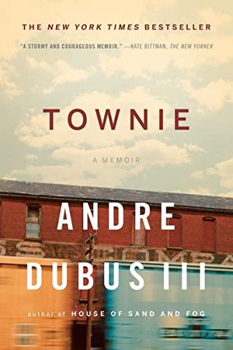 9780393340679: Townie: A Memoir