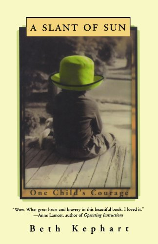 9780393340983: A Slant of Sun: One Child's Courage