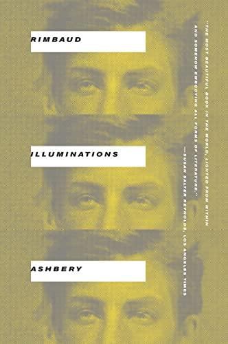 9780393341829: Illuminations