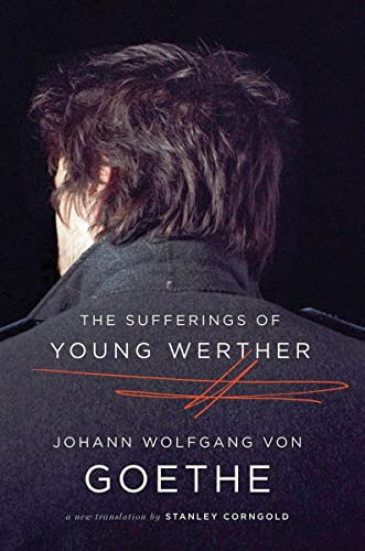 9780393343571: The Sufferings of Young Werther: A New Translation