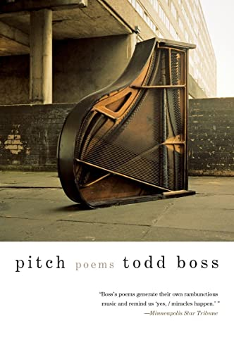 9780393345520: Pitch: Poems