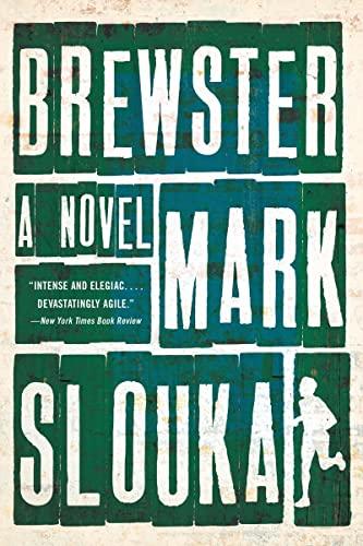 9780393348835: Brewster: A Novel