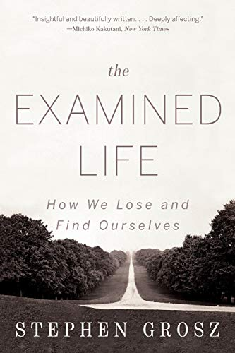 9780393349320: The Examined Life: How We Lose and Find Ourselves