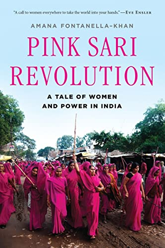 9780393349474: Pink Sari Revolution: A Tale of Women and Power in India