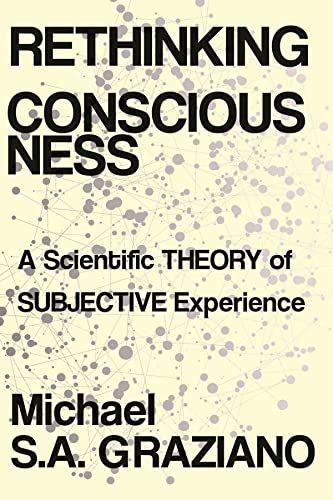 9780393652611: Rethinking Consciousness: A Scientific Theory of Subjective Experience