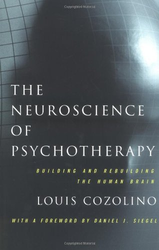 9780393703672: The Neuroscience of Psychotherapy: Building and Rebuilding the Human Brain (Norton Series on Interpersonal Neurobiology)