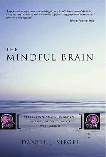 9780393704709: The Mindful Brain: Reflection and Attunement in the Cultivation of Well-Being