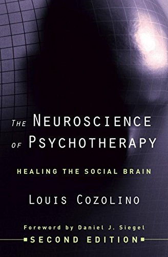 9780393706420: The Neuroscience of Psychotherapy: Healing the Social Brain (Norton Series on Interpersonal Neurobiology)