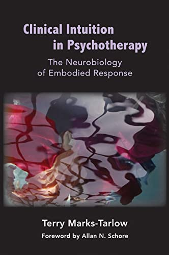9780393707038: Clinical Intuition in Psychotherapy: The Neurobiology of Embodied Response (Norton Series on Interpersonal Neurobiology)