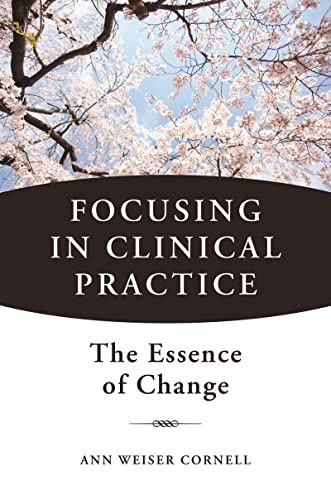 9780393707601: Focusing in Clinical Practice: The Essence of Change