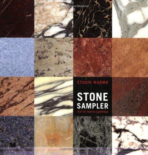 9780393731187: Stone Sampler