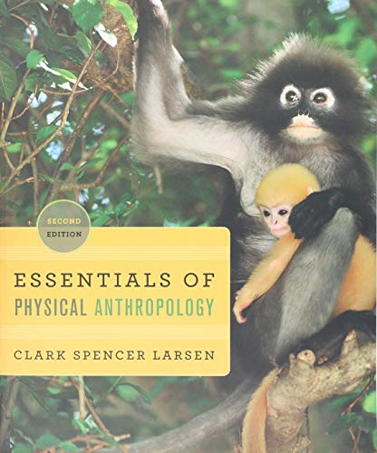 Essentials of Physical Anthropology: Discovering Our Origins: Larsen, Clark Spencer