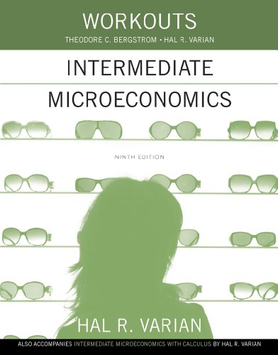 9780393922615: Workouts in Intermediate Microeconomics