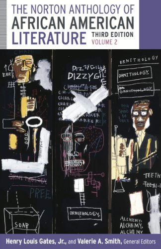 9780393923704: The Norton Anthology of African American Literature (Third Edition) (Vol. 2)