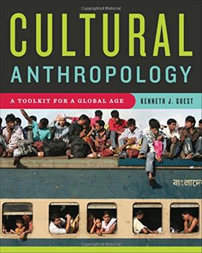 9780393929577: Cultural Anthropology: A Toolkit for a Global Age