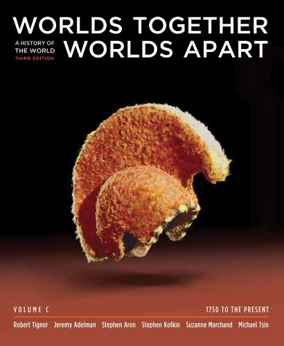 Worlds Together, Worlds Apart: A History of the World: 1750 to the Present (Third Edition) (Vol. C)...
