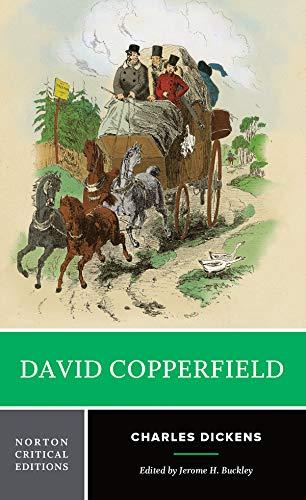 9780393958287: David Copperfield (Norton Critical Editions)
