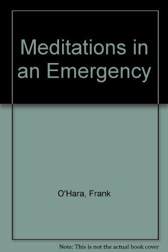 9780394173436: Meditations in an Emergency