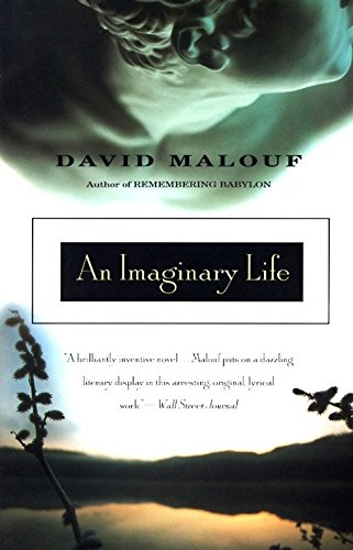 An Imaginary Life - Signed by author