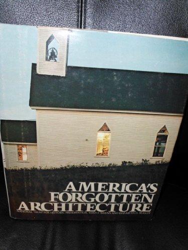 9780394496924: America's forgotten architecture