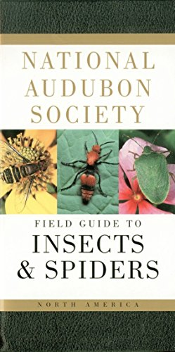 9780394507637: National Audubon Society Field Guide to Insects and Spiders: North America (National Audubon Society Field Guides (Paperback))