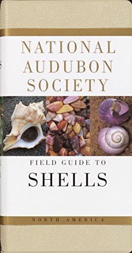 9780394519135: The Audubon Society Field Guide to North American Seashells (The Audubon Society Field Guide Series)
