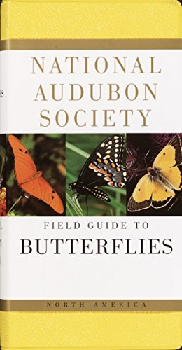 9780394519142: National Audubon Society Field Guide to North American Butterflies (The Audubon Society Field Guide Series)