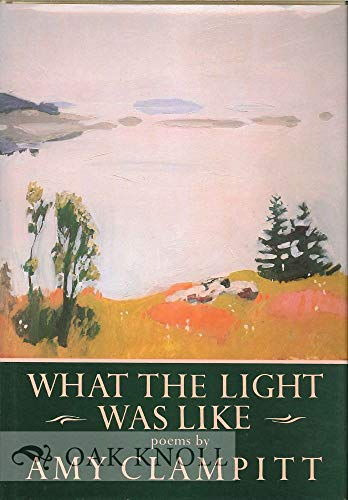 9780394543185: WHAT THE LIGHT WAS LIKE (Knopf Poetry Series, 18)