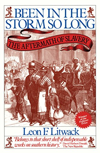 Been in the Storm So Long: The Aftermath of Slavery (Signed)