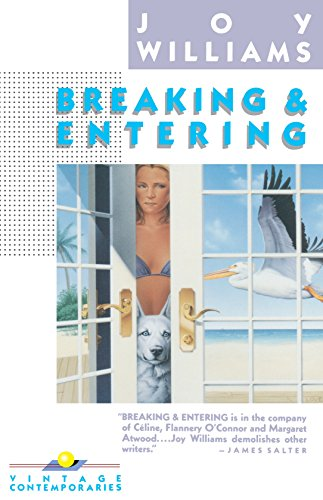 9780394757735: Breaking and Entering (Vintage Contemporaries)