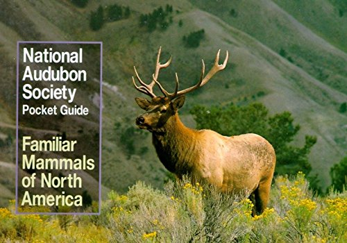 The Audubon Society Pocket Guides : Familiar Mammals, North America
