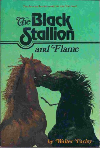 Image result for the black stallion and flame