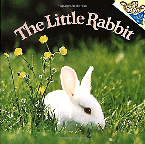 The Little Rabbit: Dunn, Judy; Dunn,