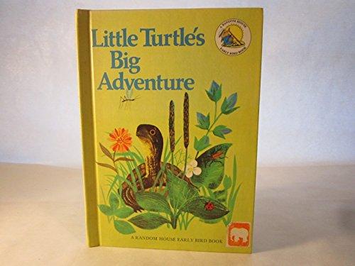 Little Turtle's Big Adventure: David L. Harrison