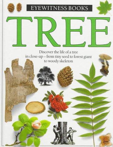 9780394996172: Tree (Eyewitness Books)