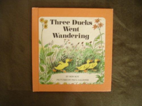 9780395289549: Three Ducks Went Wandering