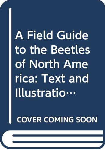 9780395318089: A Field Guide to the Beetles of North America: Text and Illustrations