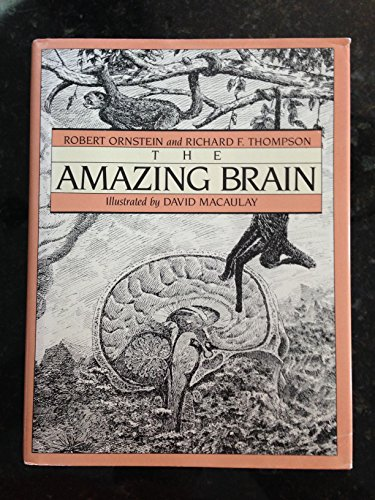 9780395354865: The Amazing Brain