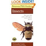 9780395407783: Peterson First Guide to Insects of North America