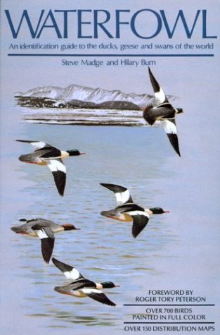 9780395467268: Waterfowl: An Identification Guide to the Ducks, Geese, and Swans of the World