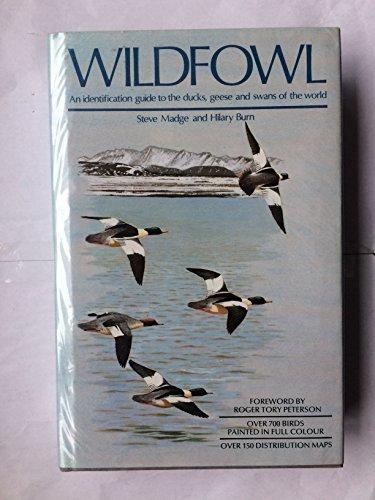 Waterfowl: Madge, Steve & Hilary Burn
