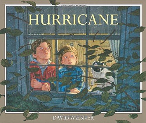 9780395543825: Hurricane