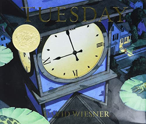 9780395551134: Tuesday (Caldecott Honor Book)