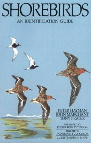9780395602379: Shorebirds: An Identification Guide to the Waders of the World