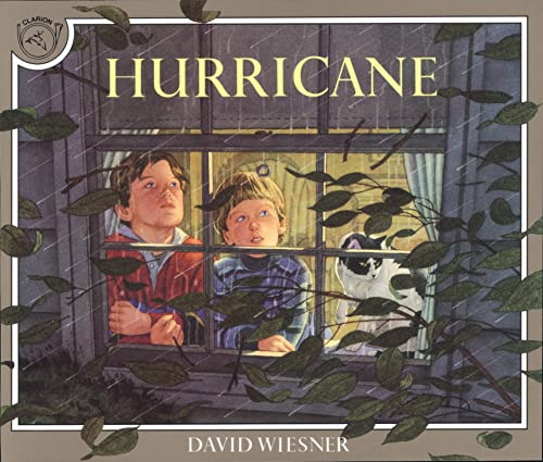 9780395629741: Hurricane